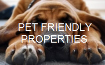 tahoe pet friendly vacation rentals
